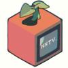 NISHIO-NANORA / NNTV