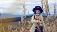 The Wayfarers, Autumn colored silver grass land