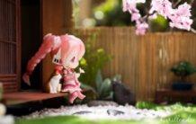 Sakura's Hanami Days