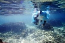 Append Miku Underwater Photo