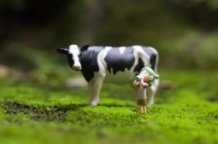 Yotsuba and Milk