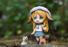 Kirino in the forest