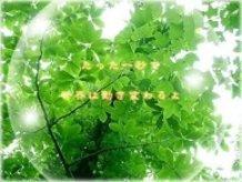 """Ever Green"" by Hatsune Miku"