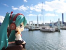 At the harbor