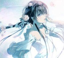 White Flower Rain