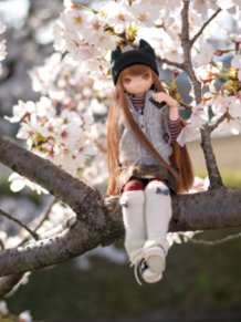 Listen to the Spring!