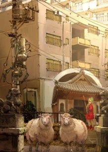 pilgrimage16