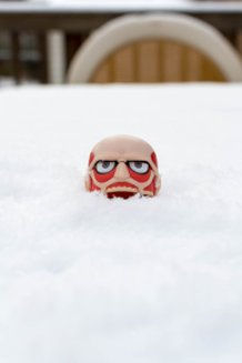 Colossal Titan in the Snow