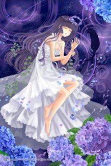 Hydrangea Night Dream