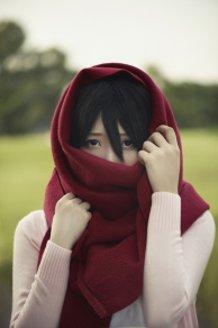 Mikasa Ackerman : This world