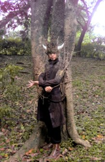 Wizard of the Wood