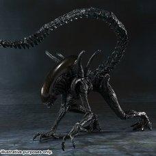 S.H.MonsterArts Alien vs. Predator Alien Warrior
