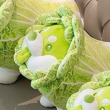 Vegetable Fairy Series Cabbage Dog 35cm Plush