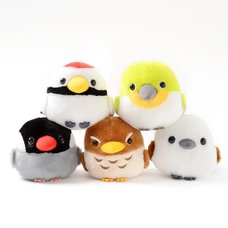 Kotori Tai Appare Bird Plush Collection (Standard)