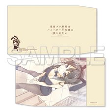 Rascal Does Not Dream of Bunny Girl Senpai Book Cover