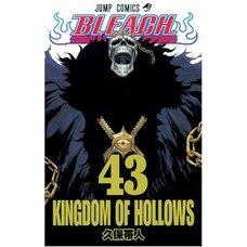 Bleach Vol. 43 (Japanese)