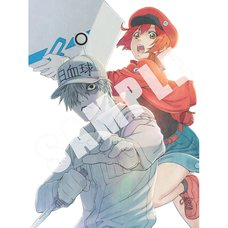 Cells at Work! Complete Blu-ray Set