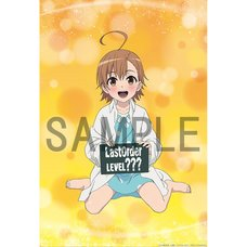 A Certain Scientific Accelerator Last Order Life-Size Blanket