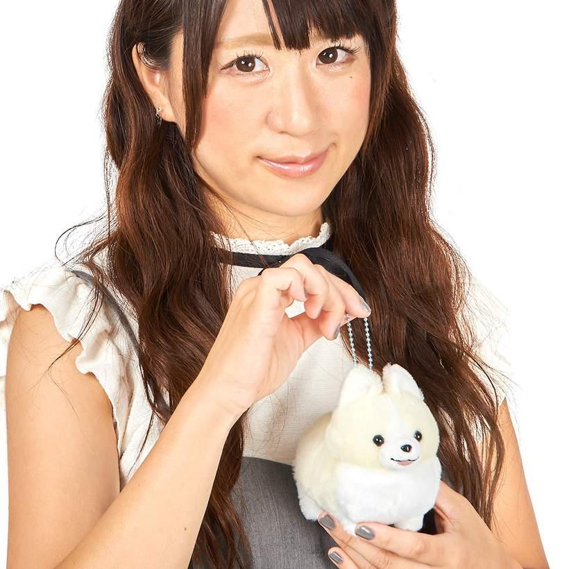 Amuse Corgi Plush Doll Ichi Ni no Dog Corgi Stuffed Animal Happy Mugi-chan White Ball Chain Size Plushie 4 Inches