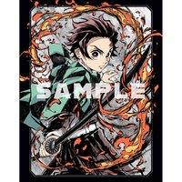 Demon Slayer: Kimetsu no Yaiba Limited Edition Blu-ray Vol. 2